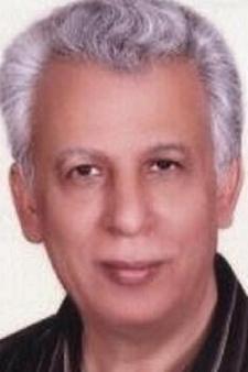 Abdelmonem Mohamed Amer